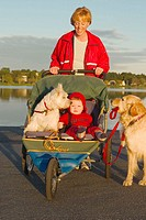 Mother with dog (holding her own lead) and 15 month old baby in stroller made for jogging