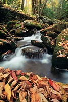 Autumn waterfall, Pennsylvania