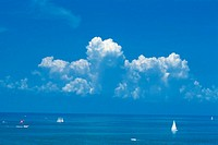 Sailboats in ocean.