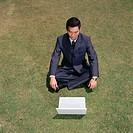 Businessman working in a field