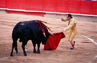 Bullfighting. Barcelona, Spain