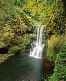 Lower South Falls in autumn, Silver Falls State Park. Willamette Valley, Oregon, USA
