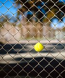 Tennis ball stuck in fence