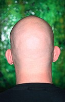 Bald man. Portrait