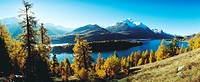 10533435, scenery, Alps, mountains, Engadin, Oberengadin, Switzerland, Europe, yellow larches, Graubünden, autumn, panorama, S