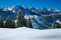 canton St. Gallen, Churfirsten, mountains, scenery, landscape, snow, Switzerland, Europe, Toggenburg, winter, wood