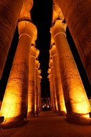 Night view of columns reaching skyward. Luxor Temple. Egypt