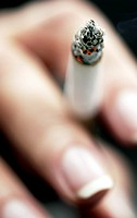 Close-up of a Person Holding a Cigarette