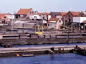 Yerseke, Muschelbecken im Hafen