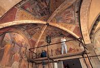 italy, tuscany, florence, cloiseter, church of santa maria novella