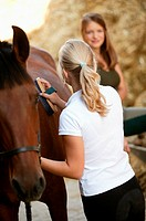 Young women grooming a horse