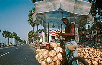 Coconuts seller on the waterfront, city of Santo Domingo. Dominican Republic, Spanish Caribbean