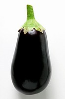 Aubergine