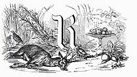 Still life with letter R, roe & root vegetables (illustration)