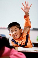 Portrait of a boy with his arm raised in class