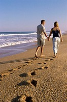 Rear view of a young couple walking on the beach