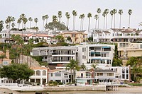 Hillside residences, homes, apartments, palm trees. Newport Bay. Newport Beach. California. USA.