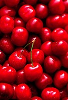 Cherries with drops of water (filling the picture)