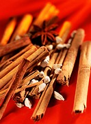 Cinnamon sticks, cardamom and star anise on red background