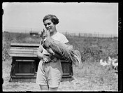 Woman holding a rooster at Ovaltine Farm, Kings Langley. Photograph by Daily Herald staff photographer Edward Malindine.