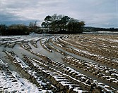 Snow on a ploughed field