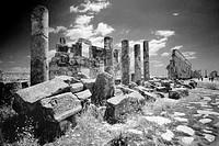 The colonnated street or Cardo Maximus of the Roman ruins of Apamea. Syria