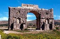 morocco, volubilis, triumphal arch