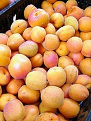 Apricots for sale in market. Camprodon. Girona province, Catalonia. Spain