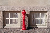 Fyre hydrant and windows