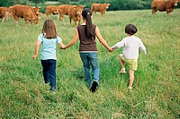 Girls skipping towards cows