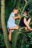 Girl watching boy reading in a tree