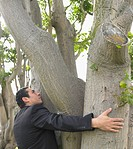 Businessman hugging tree in park