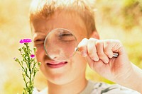 Boy with magnifying glass examines a plant