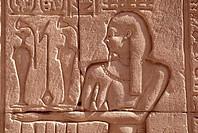 Edfu, Tempel/ Relief