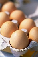 Close-up of eggs in an egg carton