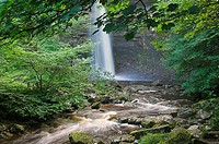 Hardraw Force waterfall, Yorkshire Dales, UK