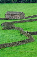 Dry Stone walls and stone barns landscape, Yorkshire Dales, UK