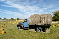 Old farm truck with hay on back blue
