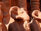 Close-up of three ram statues in a temple, Temples Of Karnak, Luxor, Egypt