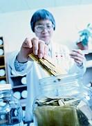 Pharmacist Holding Phellodendron Amurense