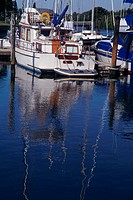 Reflection of docked boat