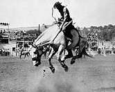 Man riding bucking horse in rodeo
