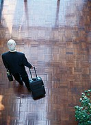 Mature businessman in lobby with luggage, rear view, elevated view