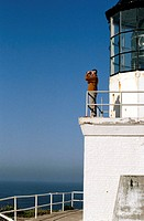 Man Looking from Lighthouse