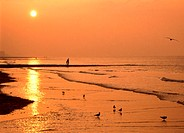 Parent and child walking on beach at sunset