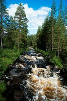 Water flowing, Modus National Park, Sweden
