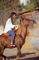 Young woman sitting on horse, side view