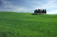 europa, italia, tuscany, val d´orcia