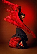 Female Flamenco Dancer