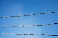 Three strands of barbed wire against clear blue sky